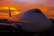 D-ABVD - Lufthansa Boeing 747-400 aircraft