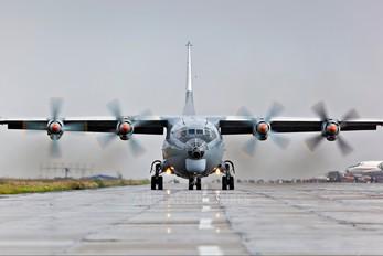 RA-11344 - Russia - Air Force Antonov An-12 (all models)