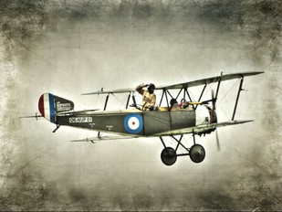 OK-NUP 01 - Private Sopwith 1½ Strutter