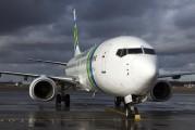 PH-HZB - Transavia Boeing 737-800 aircraft