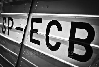 SP-ECB - Aeroklub Nadwislanski PZL 104 Wilga