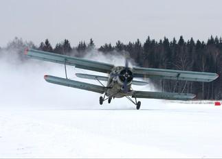 RA-17862 - Private Antonov An-2
