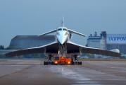 CCCP-77115 - Aeroflot Tupolev Tu-144 aircraft