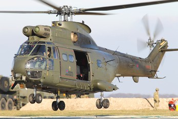 XW210 - Royal Air Force Westland Puma HC.1