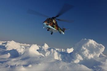 703 - Bulgaria - Air Force Aerospatiale AS532 Cougar