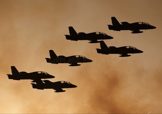 "- - United Arab Emirates - Air Force ""Al Fursan&quo Aermacchi MB-339NAT"