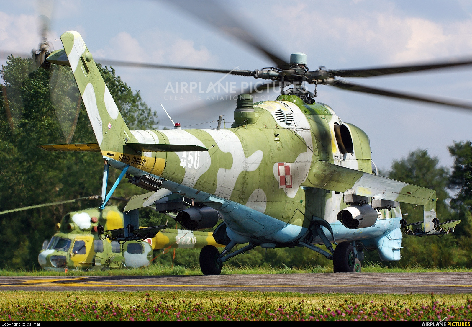 Poland - Army 461 aircraft at Undisclosed location