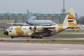 1286 - Egypt - Air Force Lockheed C-130H Hercules