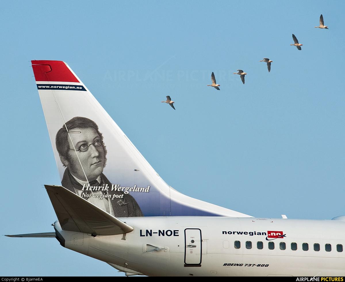 Norwegian Air Shuttle LN-NOE aircraft at Copenhagen Kastrup