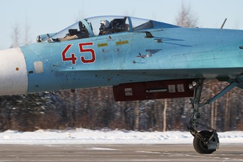 45 - Russia - Air Force Sukhoi Su-27