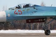 45 - Russia - Air Force Sukhoi Su-27 aircraft