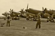 - - Private Curtiss P-40F Warhawk aircraft