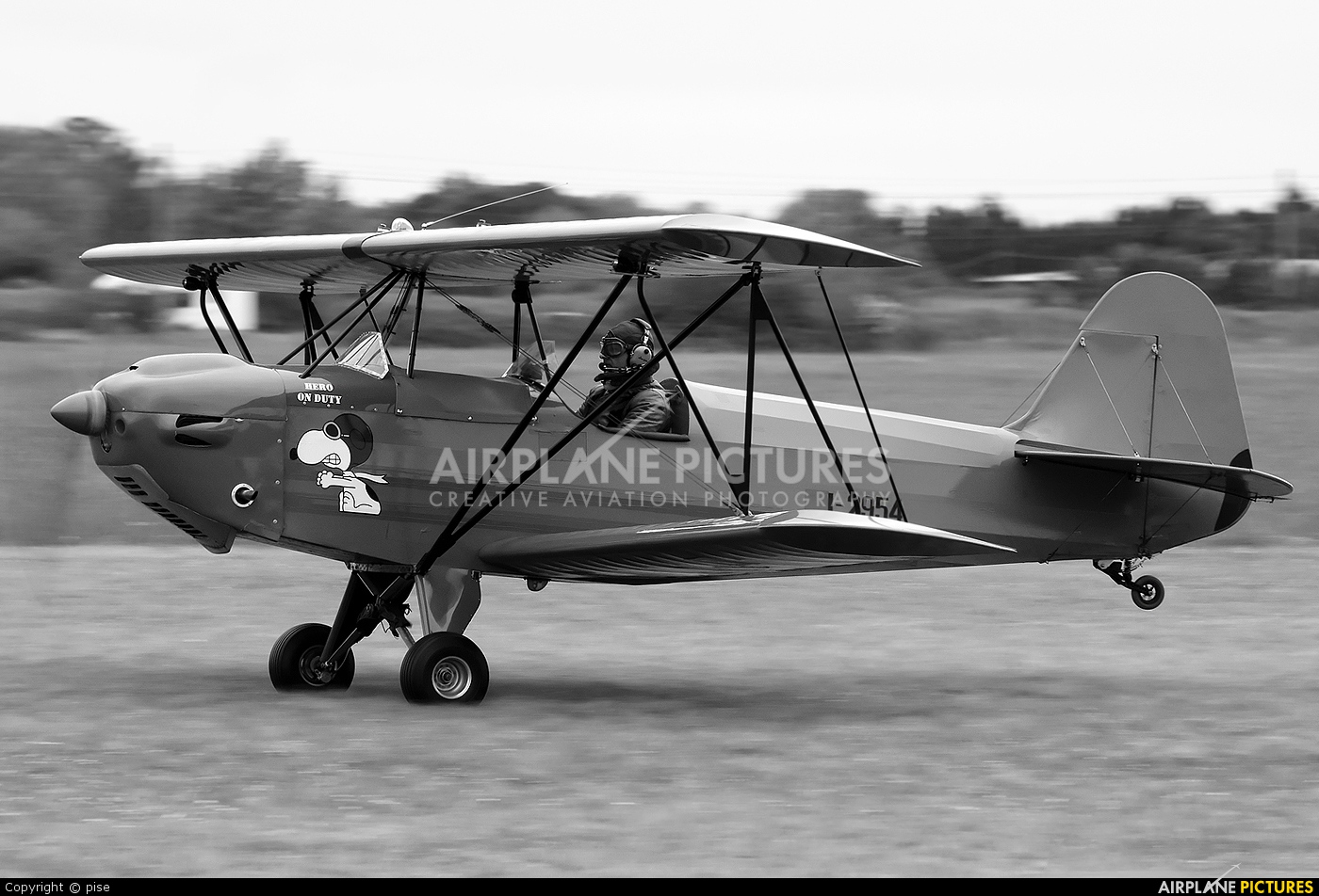 Fisher Celebrity Structural Failure During Aerobatics ...
