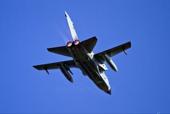 46+18 - Germany - Air Force Panavia Tornado - IDS