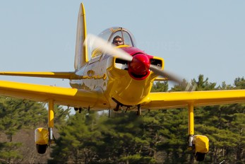 N80216 - Private de Havilland Canada DHC-1 Chipmunk (Modified)