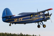 SP-FIF - Private Antonov An-2 aircraft