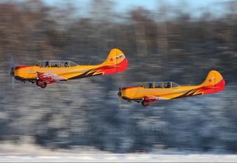 RA-0680G - Private Yakovlev Yak-52