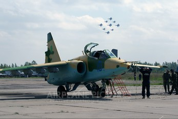 10 - Turkmenistan - Air Force Sukhoi Su-25