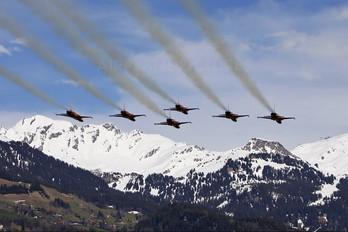 J-3087 - Switzerland - Air Force:  Patrouille de Suisse Northrop F-5E Tiger II