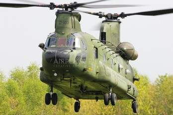 D-103 - Netherlands - Air Force Boeing CH-47D Chinook