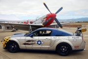 N334FS - Private North American P-51D Mustang aircraft