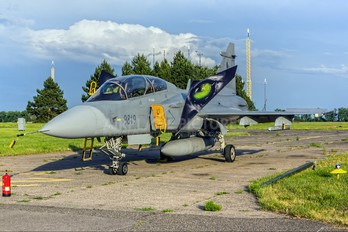 9819 - Czech - Air Force SAAB JAS 39D Gripen