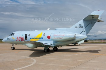 22-3019 - Japan - Air Self Defence Force Hawker Beechcraft U-125A