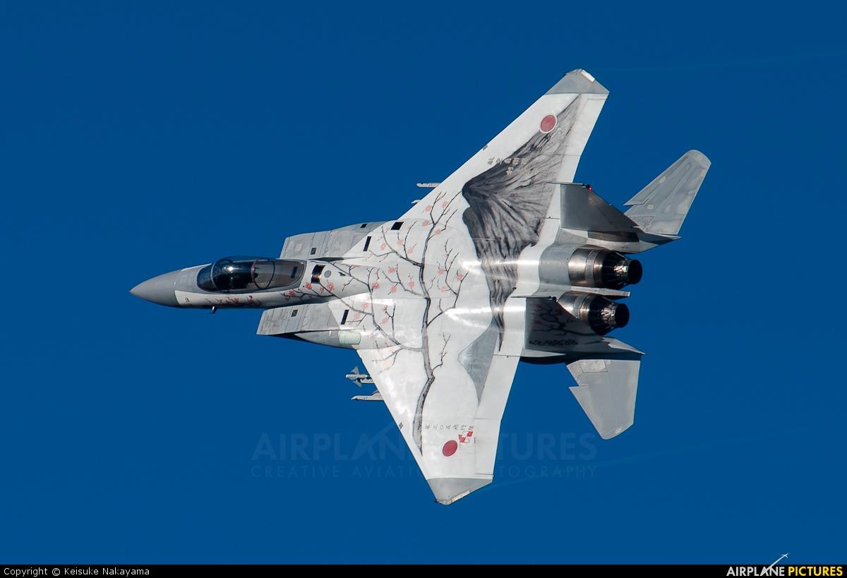 42-8838 - Japan - Air Self Defence Force Mitsubishi F-15J