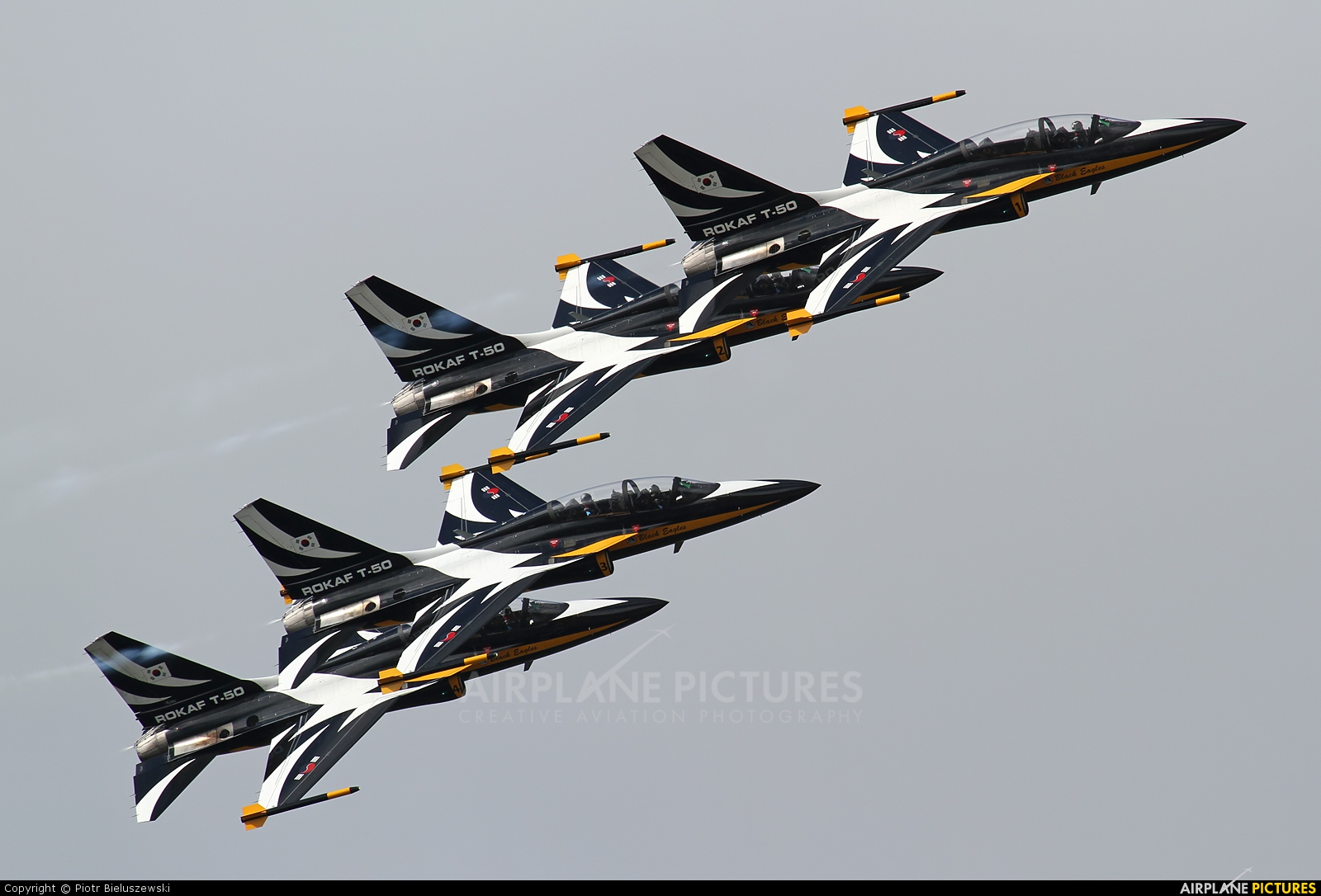 Korea (South) - Air Force: Black Eagles Korean Aerospace T-50 Golden