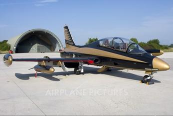 "430 - United Arab Emirates - Air Force ""Al Fursan"" Aermacchi MB-339NAT"