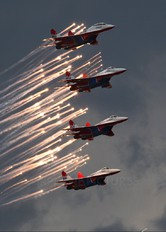 """04 - Russia - Air Force """"Strizhi"""" Mikoyan-Gurevich MiG-29"""