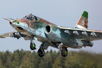 - - Russia - Air Force Sukhoi Su-25SM