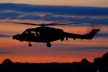 ZF537 - British Army Westland Lynx AH.9