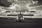 SE-XXZ - Private Fokker DR.1 Triplane (replica) aircraft