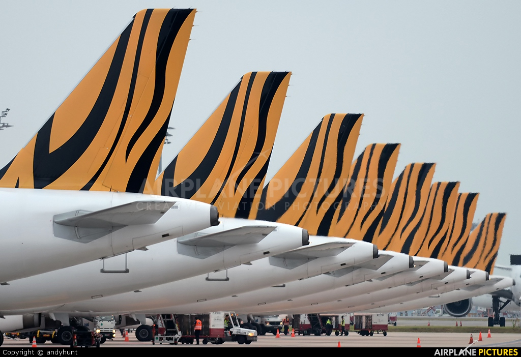 Tiger Airways 9V-TAZ aircraft at Singapore - Changi