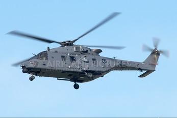 NZ3302 - New Zealand - Air Force NH Industries NH-90 TTH