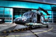 261 - Netherlands - Navy Westland Lynx SH-14D aircraft