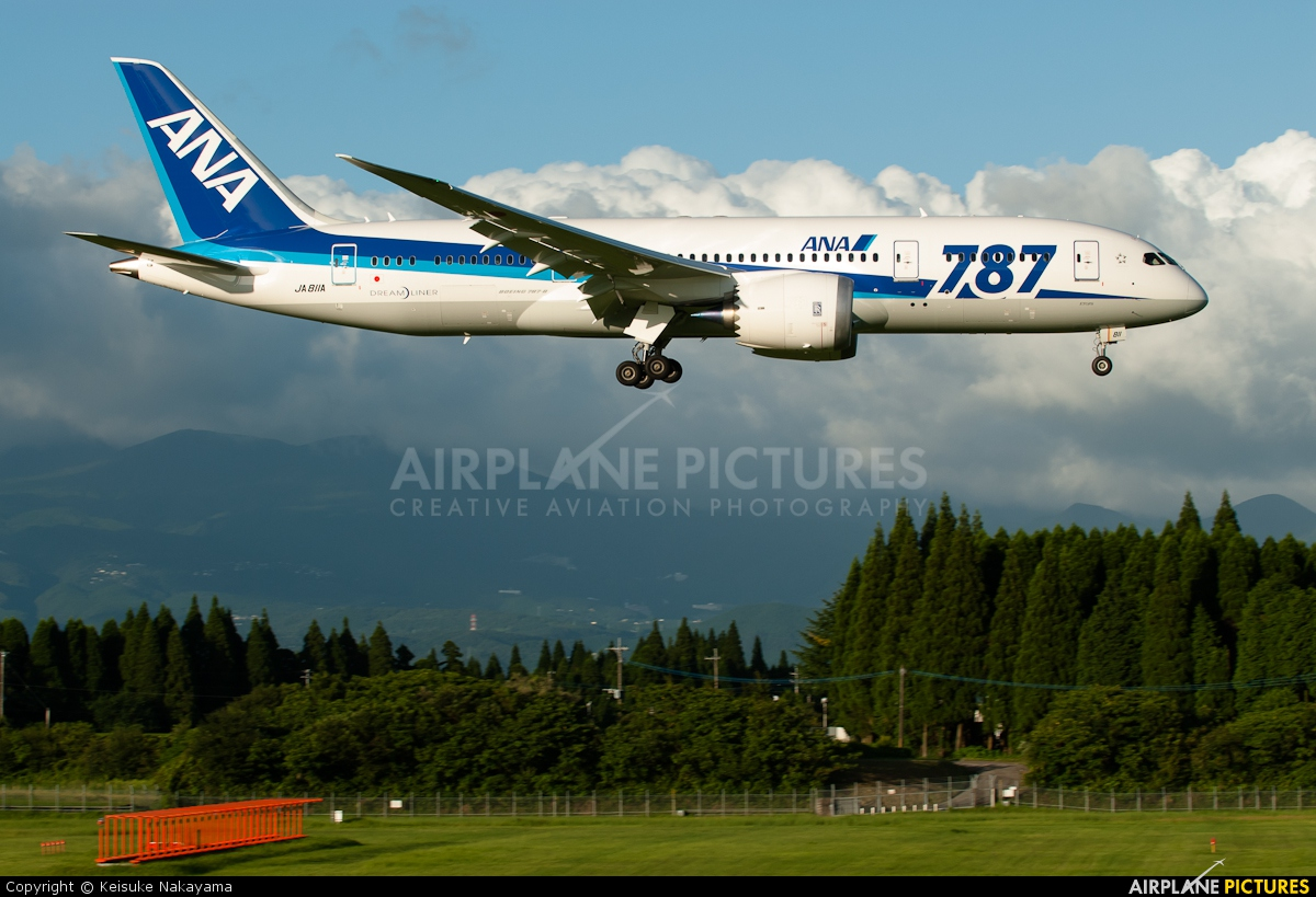 ANA - All Nippon Airways JA811A aircraft at Kagoshima