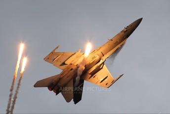 HN-441 - Finland - Air Force McDonnell Douglas F-18C Hornet