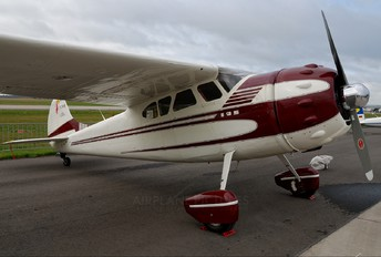 NC 3081B - Private Cessna 195 (all models)
