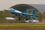 100 - Ukraine - Air Force Sukhoi Su-27 aircraft