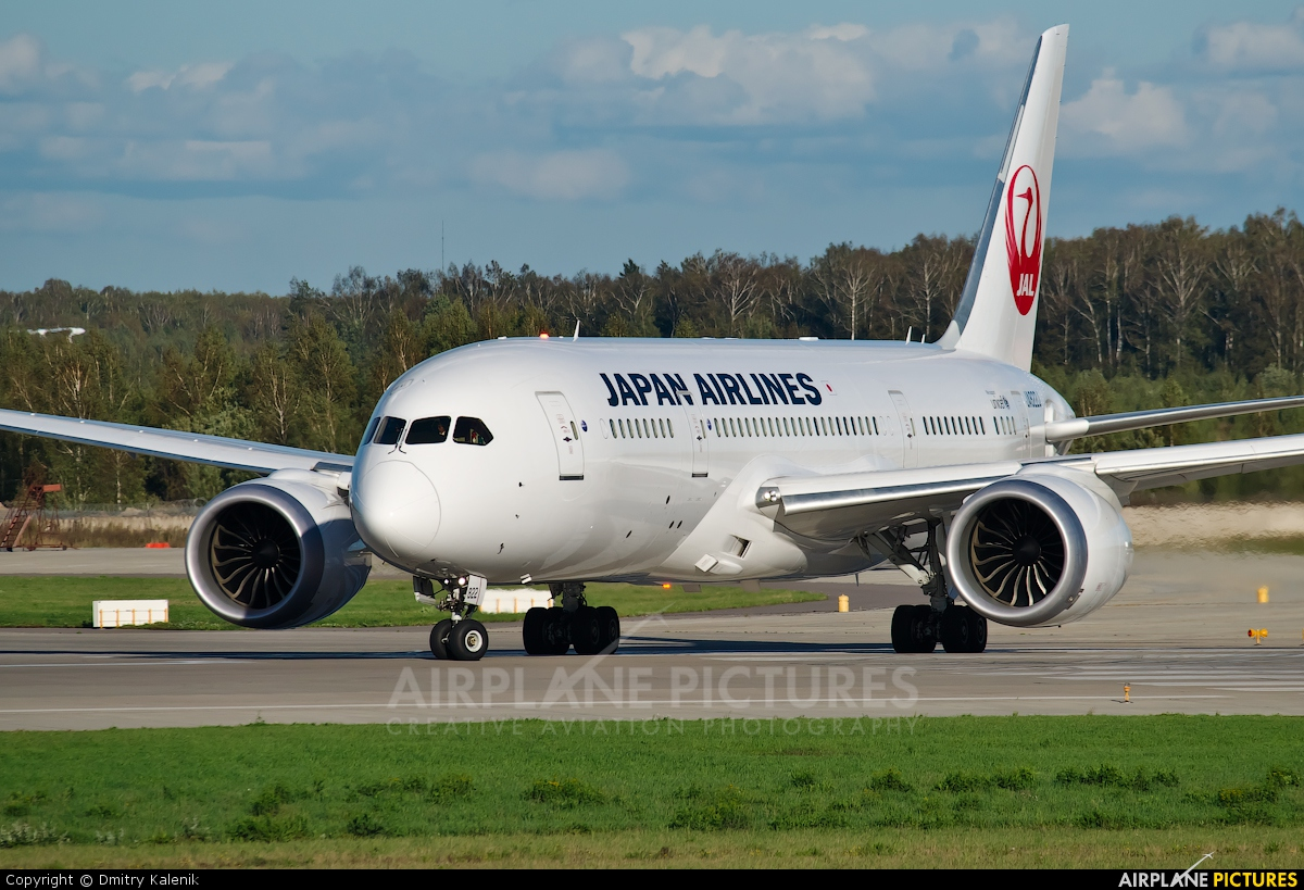 JAL - Japan Airlines JA822J aircraft at Moscow - Domodedovo