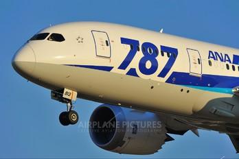 JA813A - ANA - All Nippon Airways Boeing 787-8 Dreamliner