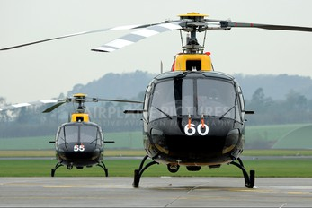 ZJ260 - Royal Air Force Aerospatiale AS350 Squirrel HT.1 & 2