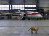 P-671 - Air Koryo Antonov An-148 aircraft