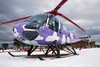 LZ-VIS - Fortuna Air Enstrom 480B