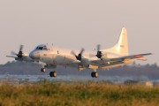 5030 - Japan - Maritime Self-Defense Force Lockheed P-3C Orion aircraft