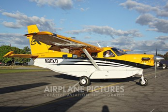 N80KQ - Private Quest Kodiak 100