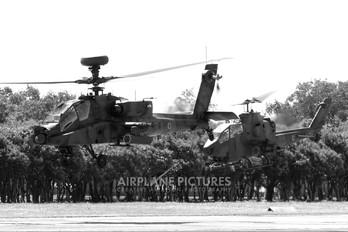 74509 - Japan - Ground Self Defense Force Fuji AH-64DJP