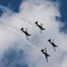OK-XRA - The Flying Bulls : Aerobatics Team Zlín Aircraft Z-50 L, LX, M series